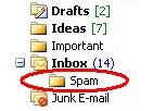 Spam Reader Screenshot